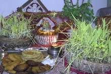 पूजा कर और फ़सल काट कर मनाया जा रहा है हरियाली का पर्व हरेला