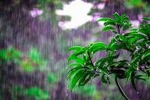 मौसम विभाग ने जारी किया ALERT, इन इलाकों में फिर भारी बारिश