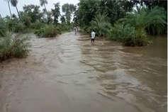 प्रदेश में देरी से ही सही, लेकिन दुरुस्त आया मानसून, 11 जिलों में सामान्य से ज्यादा बारिश