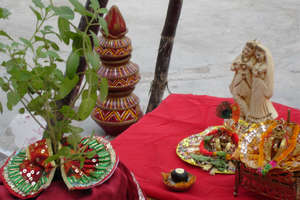 Dev Uthani Ekadashi: ऐसे करें तुलसी विवाह, शादी रहेगी खुशहाल