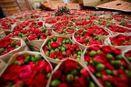 फूलों से कमा सकते करोड़ों, 50 रुपये में बिकता है 50 पैसे का गुलाब!