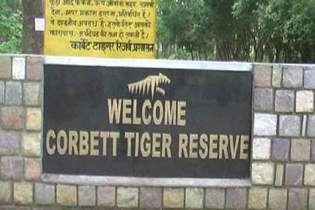 जिम कॉर्बेट में बाघों की मौत की जांच करे CBI, 6 महीने में दे रिपोर्ट: हाईकोर्ट