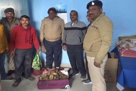 गया में दूसरी बार पकड़ी गई कछुए की बड़ी खेप, चेन्नई का तस्कर गिरफ्तार
