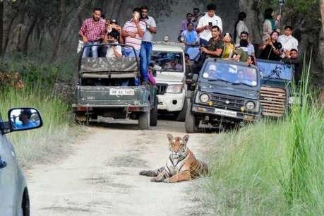 लखीमपुर खीरी: आज से बंद हो जाएगा दुधवा और पीलीभीत टाइगर रिजर्व