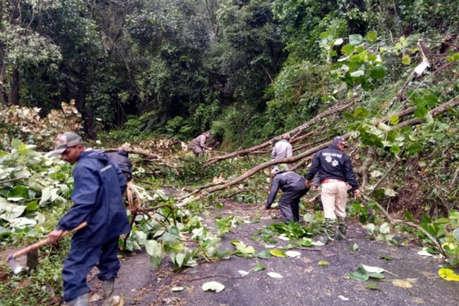 बीएसएनएल के गोदाम में छुपाकर रखी खैर की 30 टन लकड़ी बरामद