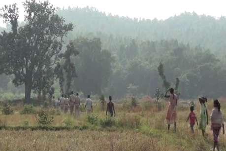 सरायकेला के पालुबेड़ा जंगल में एक हाथी की मौत