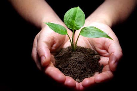 सूखे से जूझ रहे बुंदेलखंड में हरियाली बढ़ाने के लिए चलाई जा रही है 'टी एंबुलेंस'