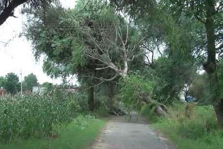 तूफान का कहर, फसलों में भारी नुकसान से किसान चिंतित