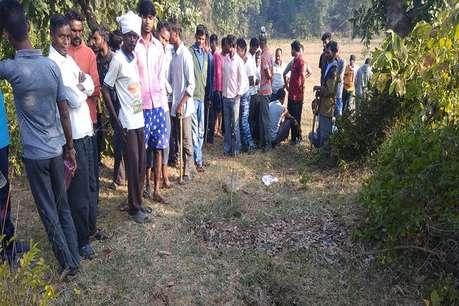 महाराष्ट्र: चंद्रपुर में जानवर के हमले में महिला की मौत, बाघ के हमले का शक