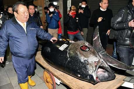 जापान के इस कारोबारी ने दो अरब रुपये में खरीदी एक मछली