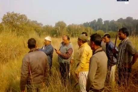 शौच करने गए युवक को बाघ ने बनाया अपना निवाला, जंगल से बरामद हुई लाश