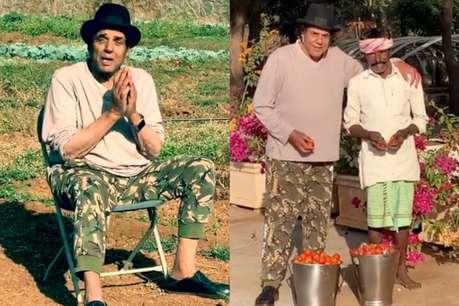 बॉलीवुड छोड़ बैंगन-टमाटर की खेती कर रहे अभिनेता धर्मेंद्र, सामने आई Photo