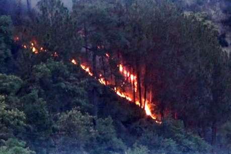हिमाचल के जंगलों में आग, अब तक 264 घटनाएं आईं सामने