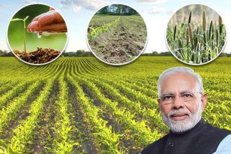 फर्जी किसान सावधान! PM किसान निधि स्कीम का लिया गलत फायदा, वापस करने होंगे पैसे