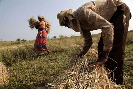 किसानों की आमदनी बढ़ाने के लिए सरकार ने अब ई-मंडी को लेकर उठाया ये बड़ा कदम