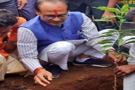 शिव 'राज' में प्लांटेशन की कमलनाथ सरकार कराएगी जांच, 1 दिन में 7 करोड़ पौधे लगाने का दावा