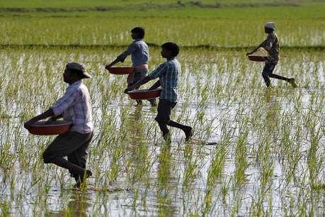 पीएम किसान सम्मान योजना का फायदा कौन से किसानों को नहीं मिलेगा! सरकार ने संसद में दिया जवाब