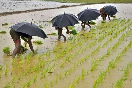 आधा मानसून सीज़न खत्म, क्या हैं देश में सूखे और बारिश के हालात?