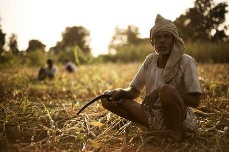 छत्तीसगढ़ में अकाल की आहट, 12 जिलों में कम बारिश से सूखे के हालात
