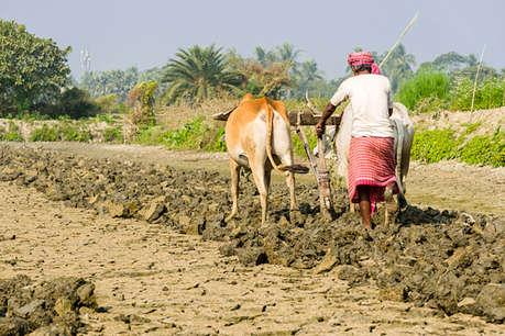 प्रधानमंत्री किसान पेंशन योजना में कोई भी पैसा दिए बिना ऐसे उठाए फायदा, जानें पूरा प्रोसेस