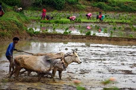 15 अगस्त तक किसानों को करना होगा ये एक काम, हर महीने मिलेगी 3000 रुपये की पेंशन