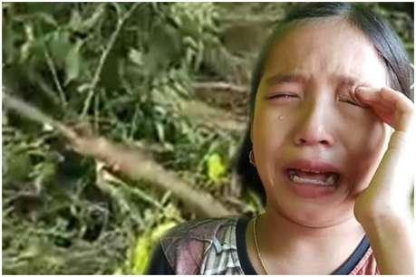 पेड़ काट दिया तो बच्ची फूट-फूट कर रोने लगी, अब CM ने बना दिया 'ग्रीन एम्बेसडर'