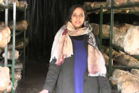 PHOTOS: लाखों की नौकरी छोड़ मशरूम उगा रही है टिहरी की मशरूम गर्ल