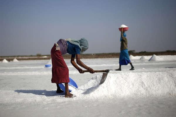 गुजरात चुनाव: देश को नमक देने वाले मजदूरों की 'खारी' जिंदगी!