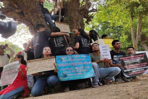 सरकार ने लिया 14,000 पेड़ काटने का फैसला, दिल्ली में शुरू हुआ 'चिपको आंदोलन'