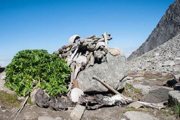 उत्तराखंड : हिमालय की ऊंचाई पर स्थित रूपकुंड झील के रहस्यमयी कंकाल